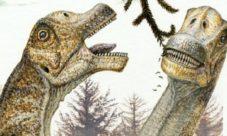 Cadena alimenticia de los dinosaurios