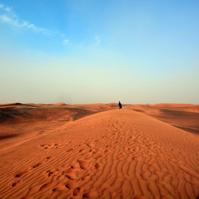 cadena-alimenticia-del-desierto